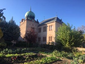 Alsace Jewish sites not discovered yet