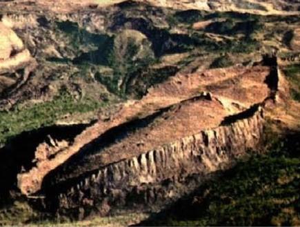 איך גילו את תיבת נוח