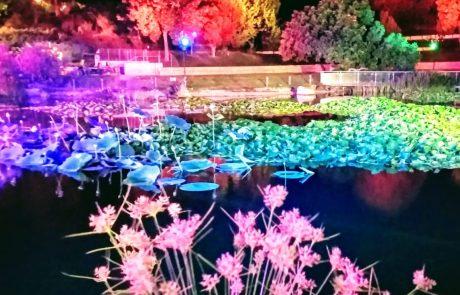 ארץ האגדות בגן הבוטני בירושלים